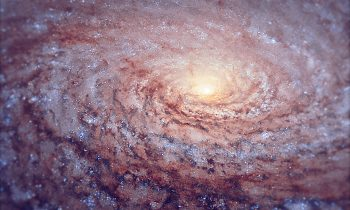 The arrangement of the spiral arms in the galaxy Messier 63, seen here in a new image from the NASA/ESA Hubble Space Telescope, recall the pattern at the centre of a sunflower. So the nickname for this cosmic object — the Sunflower Galaxy — is no coincidence. Discovered by Pierre Mechain in 1779, the galaxy later made it as the 63rd entry into fellow French astronomer Charles Messier's famous catalogue, published in 1781. The two astronomers spotted the Sunflower Galaxy's glow in the small, northern constellation Canes Venatici (the Hunting Dogs). We now know this galaxy is about 27 million light-years away and belongs to the M51 Group — a group of galaxies, named after its brightest member, Messier 51, another spiral-shaped galaxy dubbed the Whirlpool Galaxy. Galactic arms, sunflowers and whirlpools are only a few examples of nature's apparent preference for spirals. For galaxies like Messier 63 the winding arms shine bright because of the presence of recently formed, blue–white giant stars, readily seen in this Hubble image.